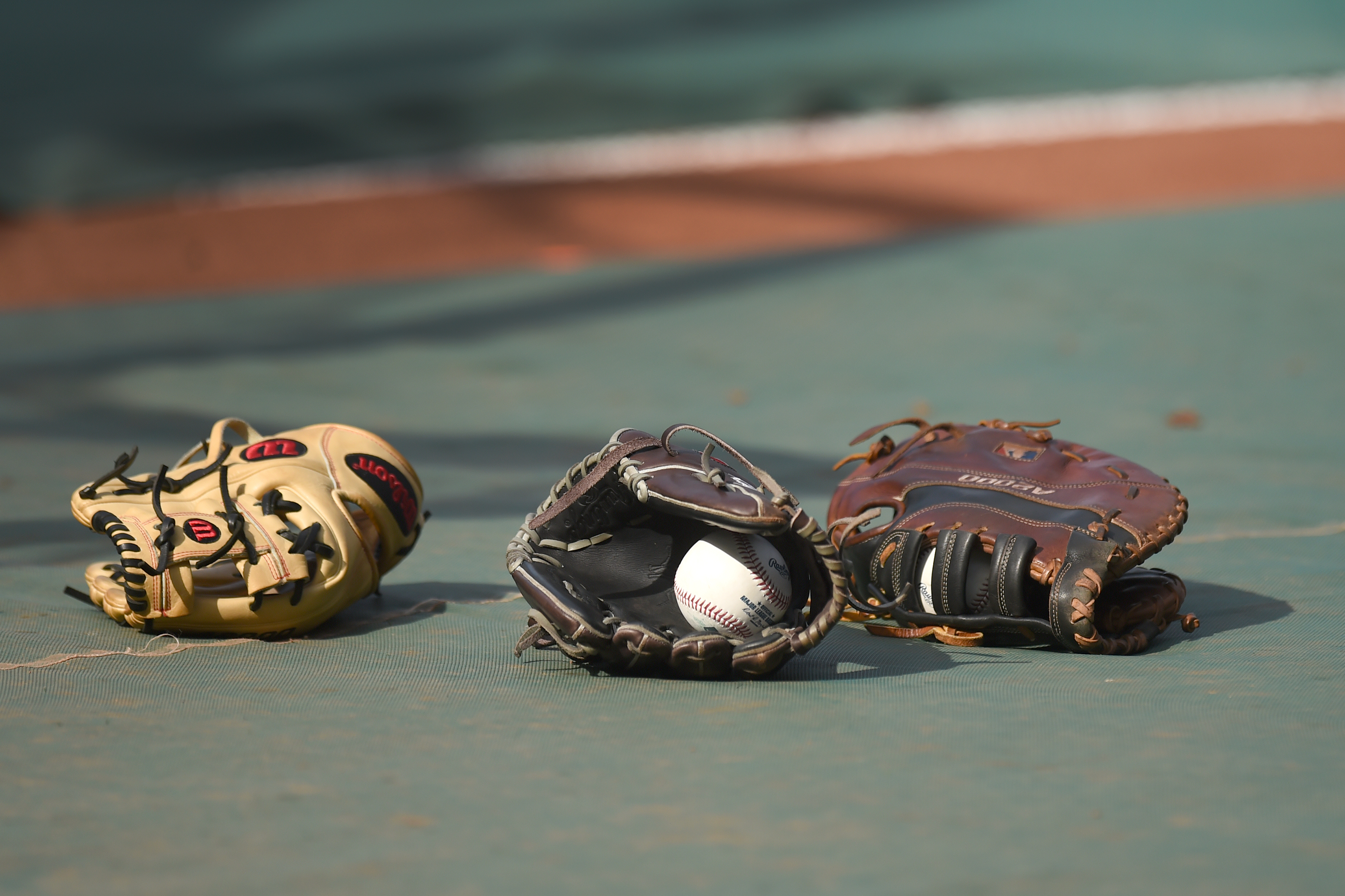 Minnesota Twins Minor League Roster Roundup Page 5